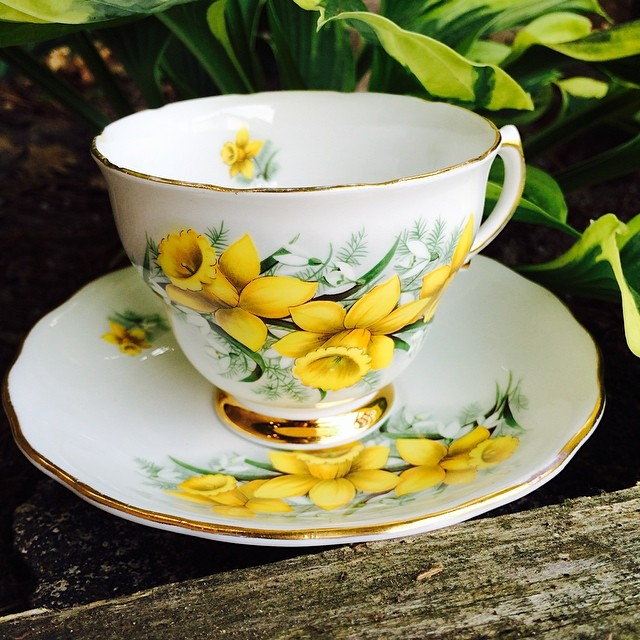 Colclough daffodils $18 USD plus shipping. Serious inquiries only. #teacup #daffodils #vintage #colclough