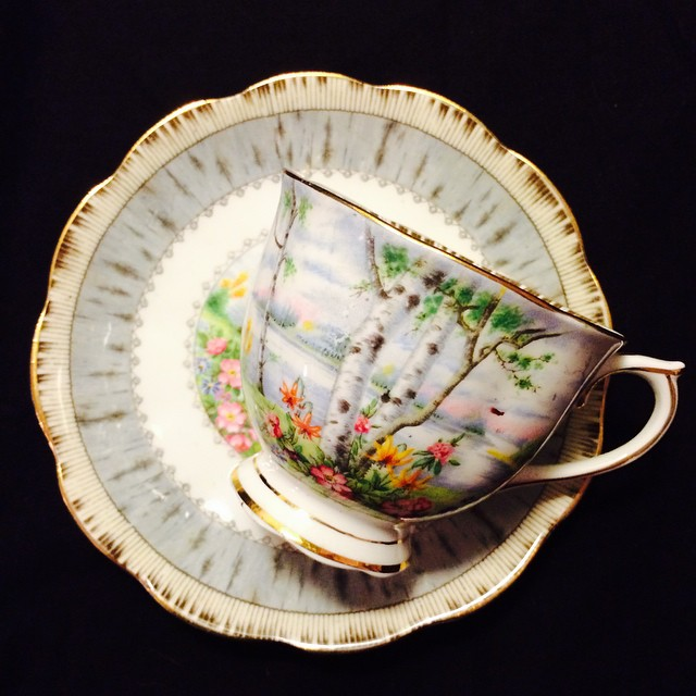 Stunning Silver Birch by Royal Albert. Email if interested. Ships Worldwide. Paypal accepted. More cups at http://teacup-treasure.com/catalogue #teacup4sale #teacupforsale #tea #teacup #teacups #teatime #vintage