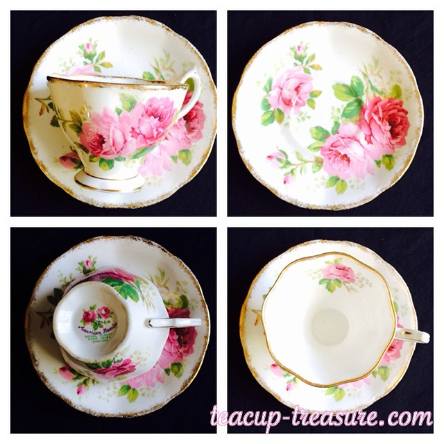 "A true ""American Beauty"". Email if interested. Ships Worldwide. Paypal accepted. More cups at http://teacup-treasure.com/catalogue #teacup4sale #teacupforsale #tea #teacup #teacups #teatime #vintage #royalalbert #americanbeauty"