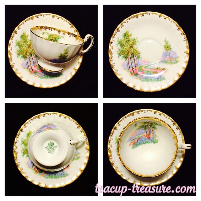 "Aynsley displays it's beautiful ""Birch Trees"". Order that are made & paid by December 22, will go out December 23. 6-10 business day delivery. Email if interested. Ships Worldwide. Paypal accepted. More cups at http://teacup-treasure.com/catalogue #teacup4sale #teacupforsale #tea #teacup #teacups #teatime #vintage"
